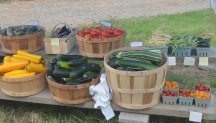 our farm stand